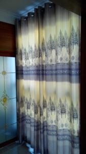 白丝遮光布-木棉树